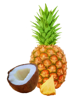 pineapple-coconut-bar-nutrition-facts